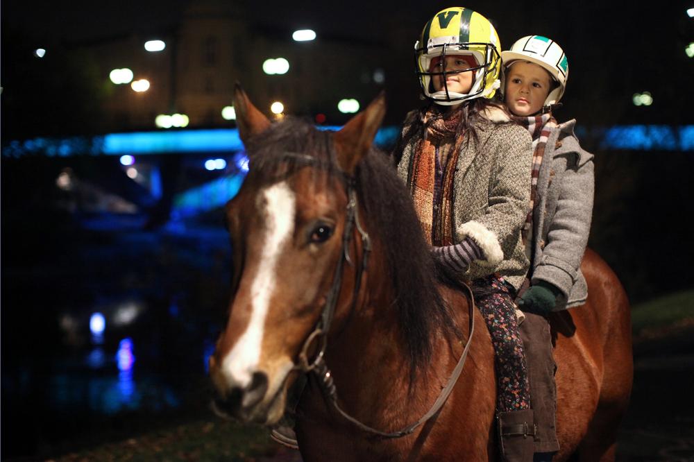 Ein Pferd Auf Dem Balkon